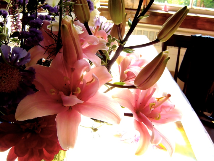 Lily from Bear RIver Blooms.