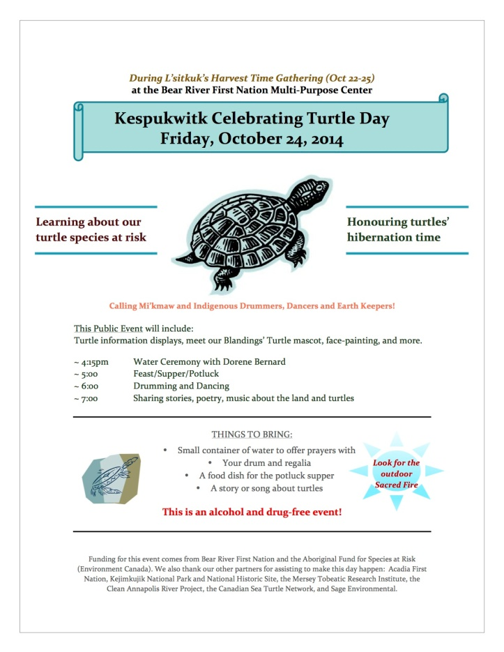 Turtle Day public poster Oct 2014