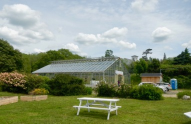 greenhouse - 4