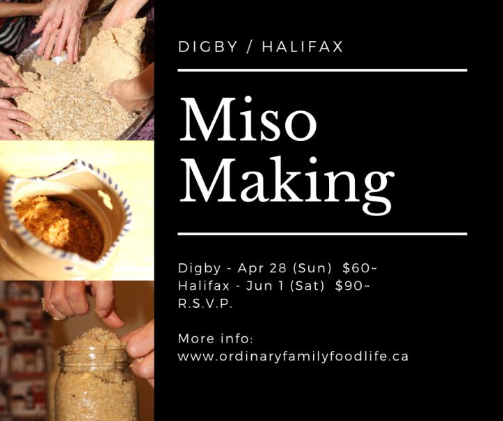 2019 spring miso graphic 1
