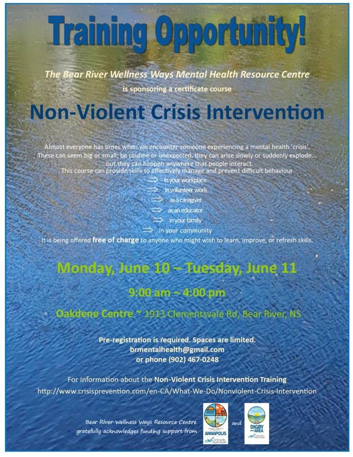 2019 BR Non Violent Crisis intervention workshop poster
